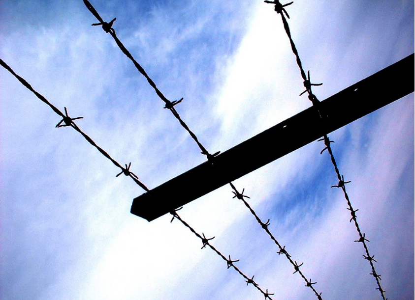 barbed wire (1 5)
