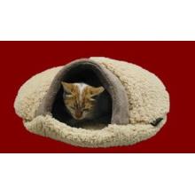Gato bonito e casa pequena do animal de estimação com almofada