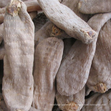 hot sale Gastrodia elata Blume food
