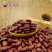 Massengetrocknete kleine rote Bohnen für in Büchsen konservierte Bohnen