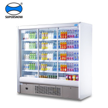 Portable Double Glass Door Upright Freezer