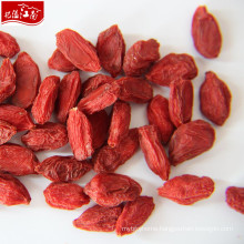 Factory supply wholesale new crop goji berry