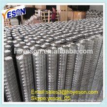concrete reinforcement wire mesh(factory price)/wire mesh price/wire mesh