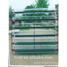 MT-Quail Cage puede mejorar enormemente el índice de codornices