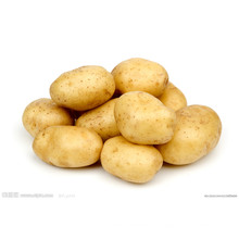 Patata fresca de calidad competitiva (150g y más)
