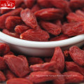 Ningxia red distributor healthy goji berry