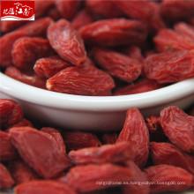 Distribuidor rojo de Ningxia saludable goji berry