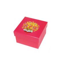 Caixa de embalagem de presente customizada para vestuário / vestuário / cachecol