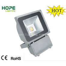 Meanwell Driver 100W High Power LED Flood Light