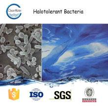 HALOTOLERANT BACTERIA Spezialprodukt zur Denitrifikationsbehandlung in Abwässern