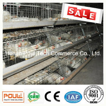 Poul Tech Meat Chicken Cage