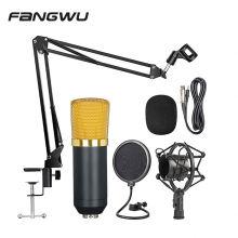 Professional Direct Custom Logo Recording Studio Ribbon Microphone