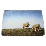 Sheep PVC door mat