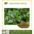 Extrait de feuille de myrtille Flavones 10% par UV, 5: 1 10: 1