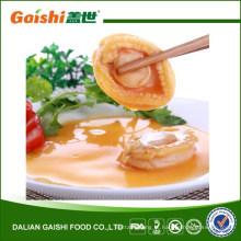 Abalone fresco de vendas quentes na China