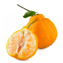 Sweet Fresh mandarin orange