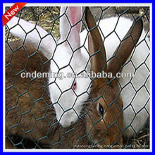 good quality Hexagonal Wire Mesh for poultry cage