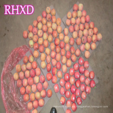 manzanas chinas rojas frescas chino buen precio para el importador con el estándar de la India
