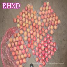 китайский свежий красный Фудзи яблоко хорошая цена для импортера с Индией стандарт