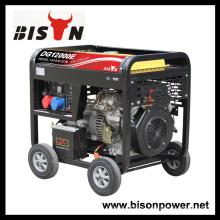 Bison China Zhejiang 3000Watt 3KVA 3KW Ручной старт Цифровой бесшумный дизельный генератор