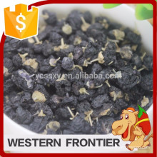 China Ningxia new harvest with best price organic Black goji berry