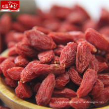 Ningxia berry harvester for goji berry