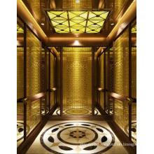 Safe & Low Noise Passenger Elevator