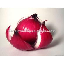 2012 китайский красный лук Горячие продажи