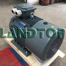 Moteur électrique de ventilateur industriel triphasé de 15KW Y2