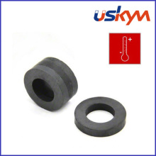 Y25 Big Ring Ferrite Magnets (R-004)