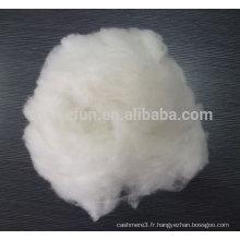 100% pure cardé Cachemire fibre cru blanc