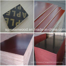 1220*2440mm WBP Constuction Film Faced Plywood