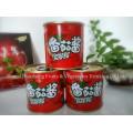 198g 28% -30% Pasta de tomate em conserva