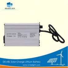 DELIGHT Solar Street Light Lithium Battery Types