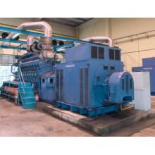 100MW Grande centrale électrique Diesel / générateurs de gaz Parallèle