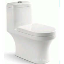 Toilette Siphon à une pièce de bonne vente pour le marché du Brésil (6207)