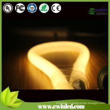Tube au néon LED avec câble de pilote / relais / pins / coins / clips / piste
