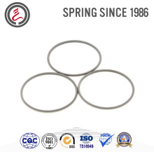 Different-Sized Auto Parts Elestic Element Oil Seal Spring
