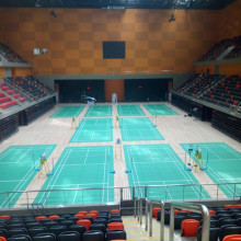 BWF International Elite Badminton Court Mat