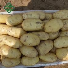 Batatas frescas fornecedor China 200g batata fresca