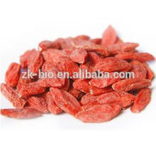 Supply Bulk Goji Berries