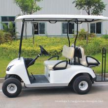 Chariot de golf automatique 2 + 2 sièges facile à utiliser (DG-C2 + 2)