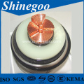 Fluoroplastic Insulated PVC sheathed power cable for electical power