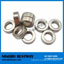 Voll magnetisierter N48 Epoxy Coated Ring Magnet