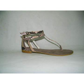 Senhoras novas do estilo sandálias lisas (HCY03-094)