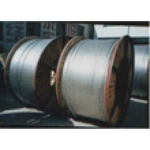 Conducteur en aluminium renforcé d'acier (ACSR)