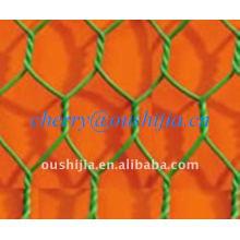 Hexagonal Wire Netting(factory&exporter)