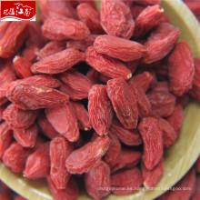 Wholesale contenedores de almacenamiento de frutas secas Goji
