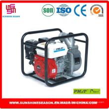 Pompes à eau de haute qualité pour usage agricole (WP30X)