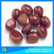 chestnut Chinese Dandong origianl 100% natural green new fresh chestnut